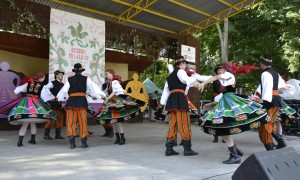 Zespół Folklorystyczny Snutki z Potarzycy