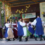Zespół Pieśni i Tańca TURSKO, pow. pleszewski