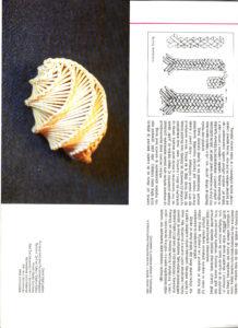 Folder słomka 2007/5